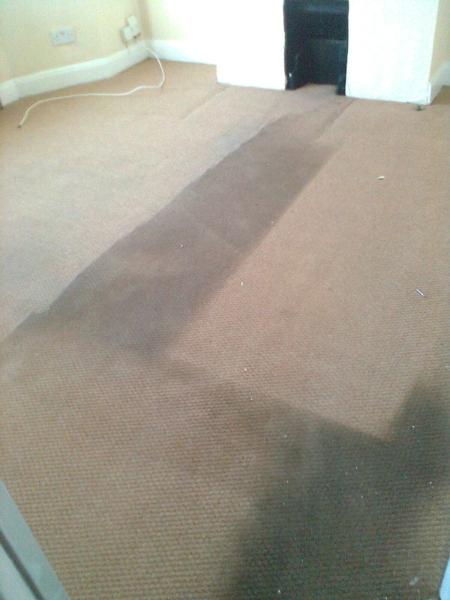carpet-5-during