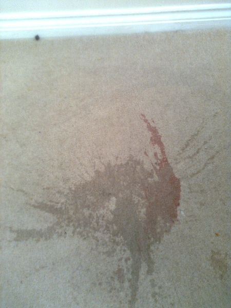 carpet-wine-stain-4-before