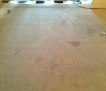 carpet-1-before