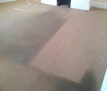 carpet-5-before